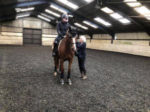 Saddle adjustment for Jane and Ginger