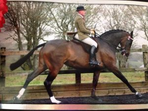 Mark Armstrong-Green and Romanno Bedriska, champion riding horse at Devon County