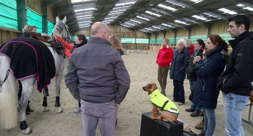 Retailer Training Course March 2018 - Sausage Supervising feature image