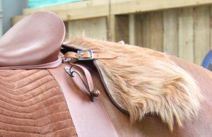 saddle 14825 After Effax (48)