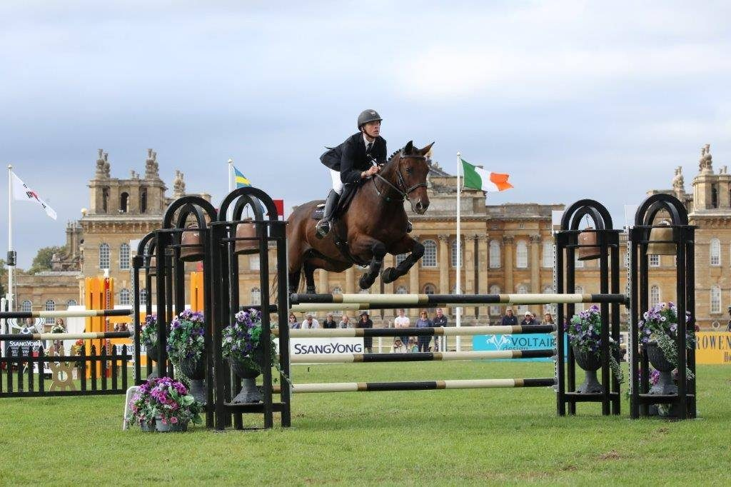 David At Blenheim 2018 10