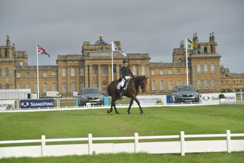 David At Blenheim 2018 5