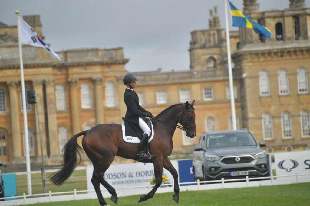 David At Blenheim 2018 6