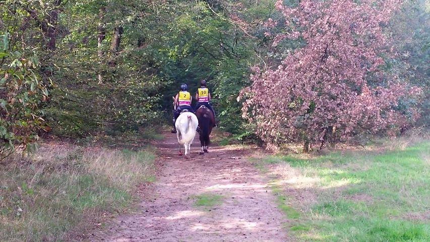 Thea Van Sante and friend at Endurance Montferland 2