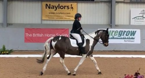 Kyrby Brown Dressage Feb 2019 feature image