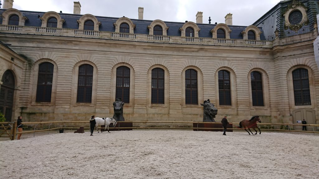 Chantilly - Equine Conference 2