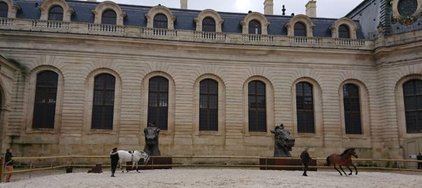 Chantilly - Equine Conference 2 Feature Image
