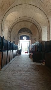 Chantilly - Equine Conference 3